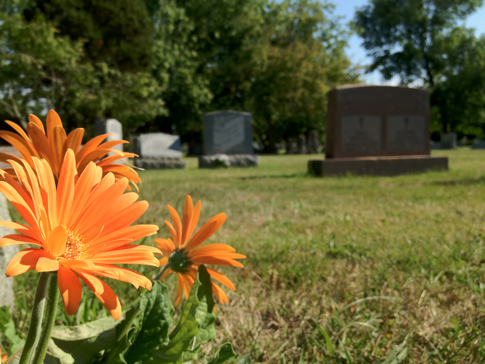 Graceland Cemetery Flowers