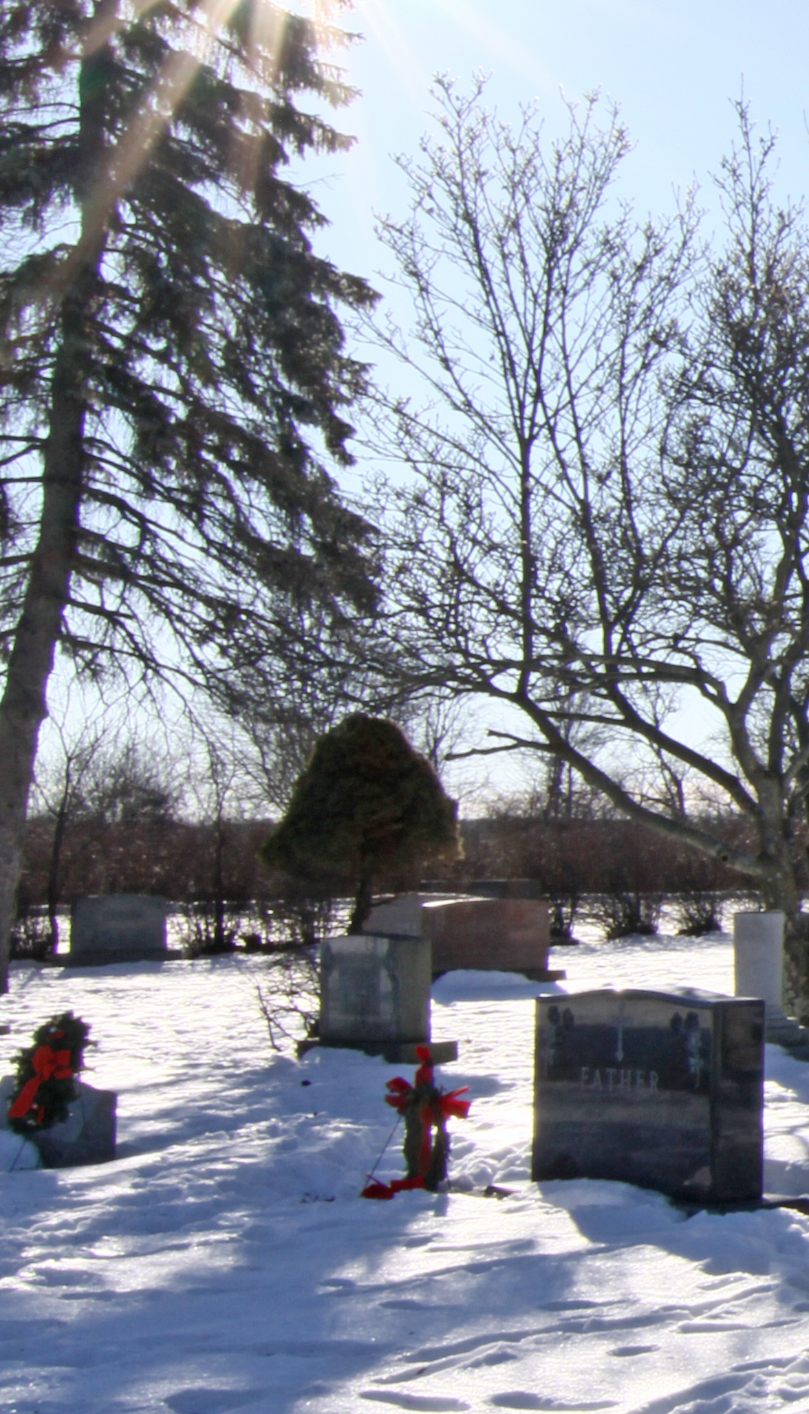 Graceland Cemetery Winter View