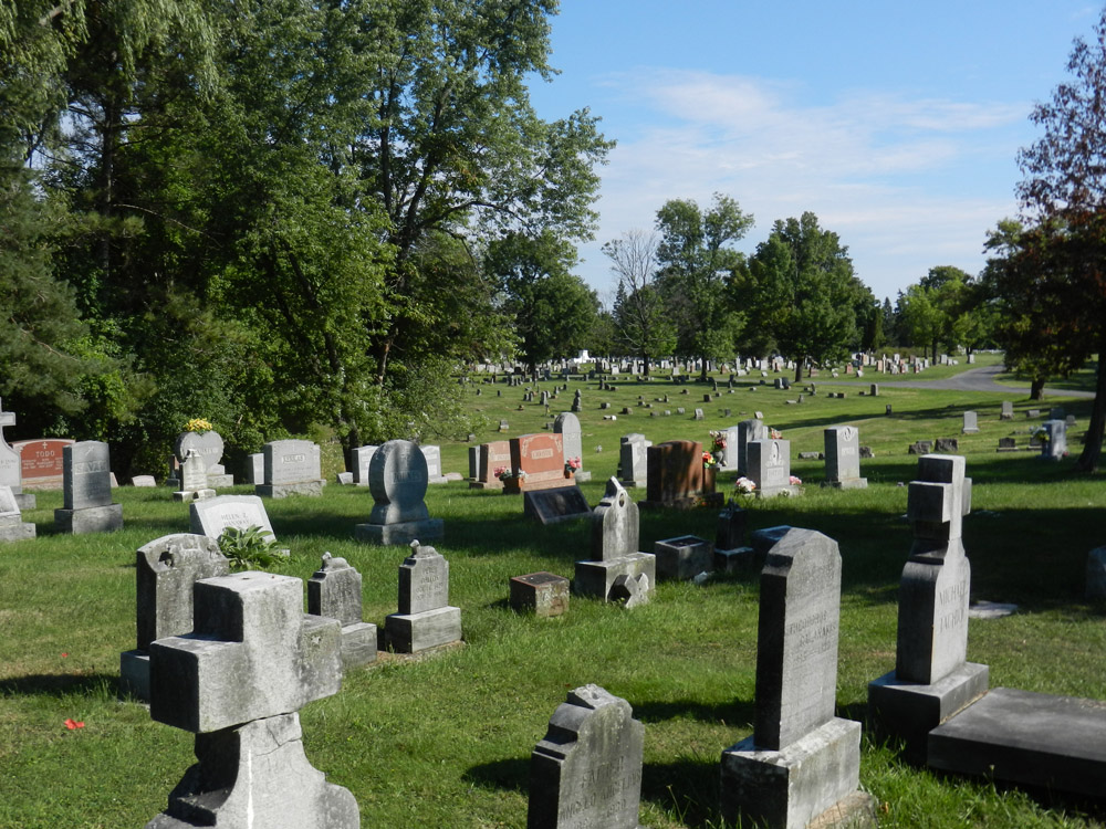 View at Graceland Cemetery